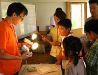 電球の消費電力はどれくらい?