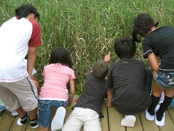 茂みを覗き込む子どもたち。
